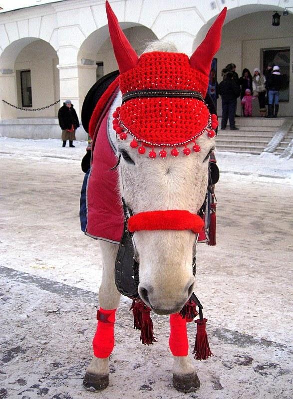 Связать ушки на лошадь вы