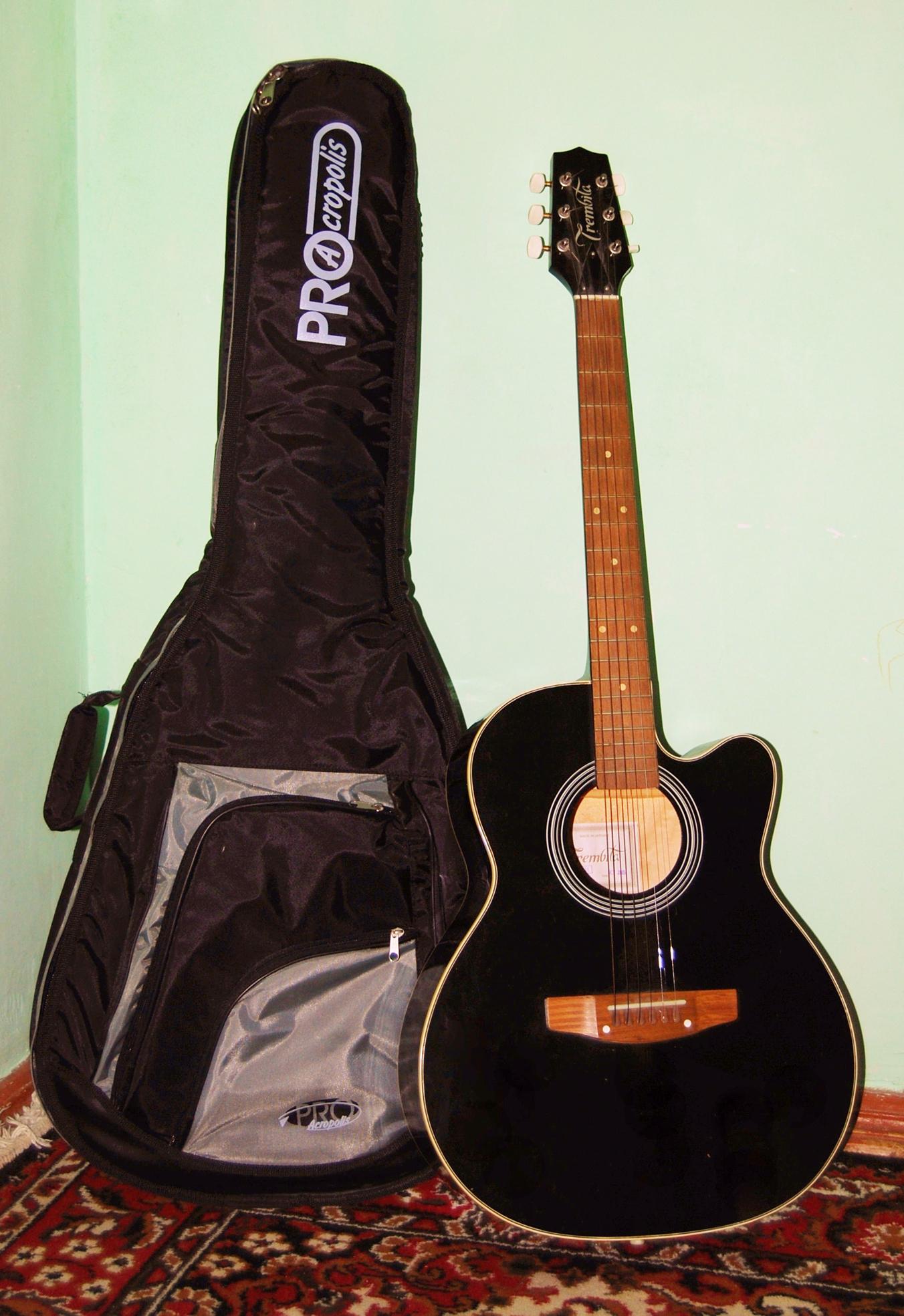 Выкройка чехол для гитары своими руками
