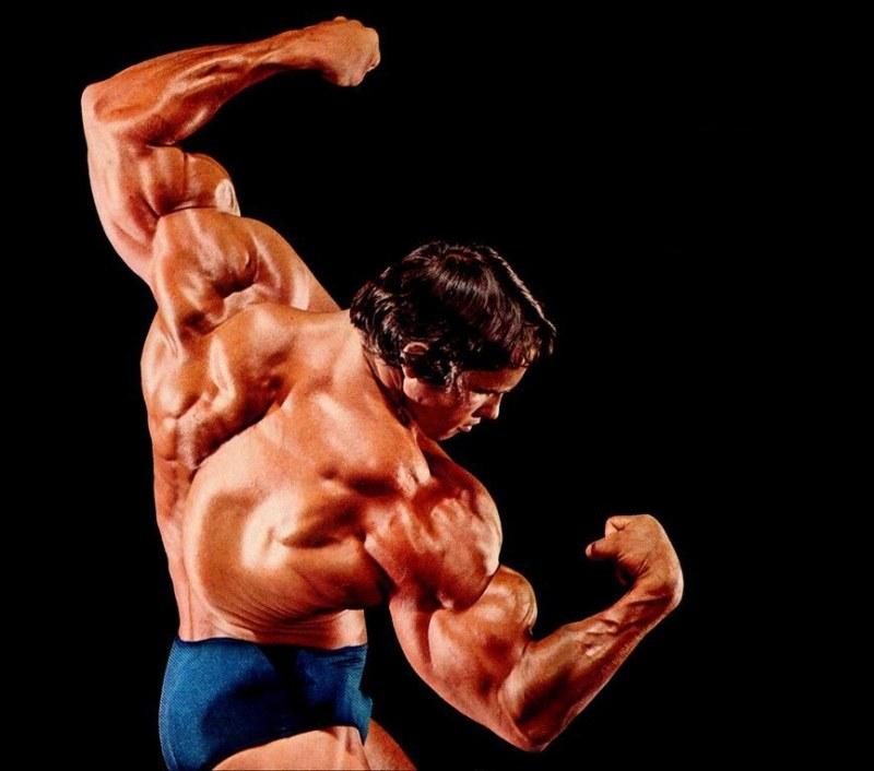 Мышца трапециевидная