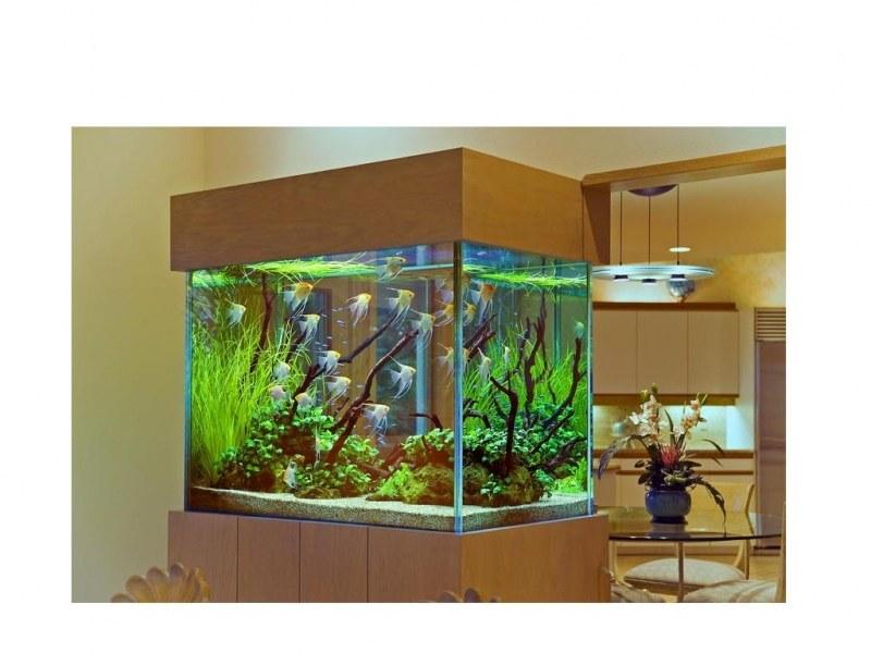 замена фильтра в аквариуме