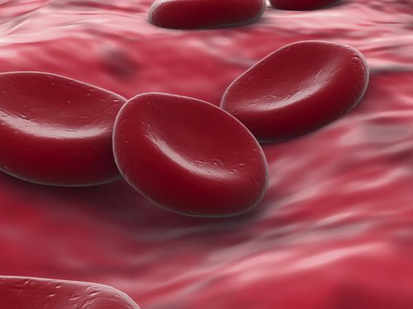 Какая самая редкая группа крови и почему? Классификация группы крови по редкости. Какой считается резус фактор редким? Группа крови, которая является самой распространенной и лучшей для здоровья