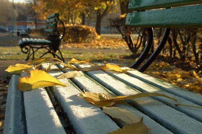 Куда пойти в ноябре в москве