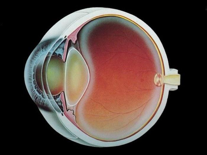 Как лечить катаракту глаза Лечение катаракты ВОССТАНОВЛЕНИЕ ЗРЕНИЯ