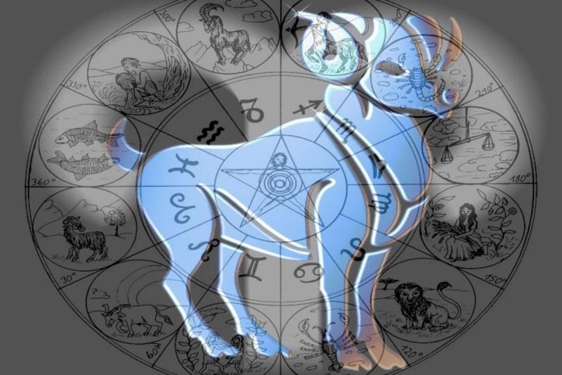 Какой знак зодиака подходит тельцу мужчине лучше всего для семьи