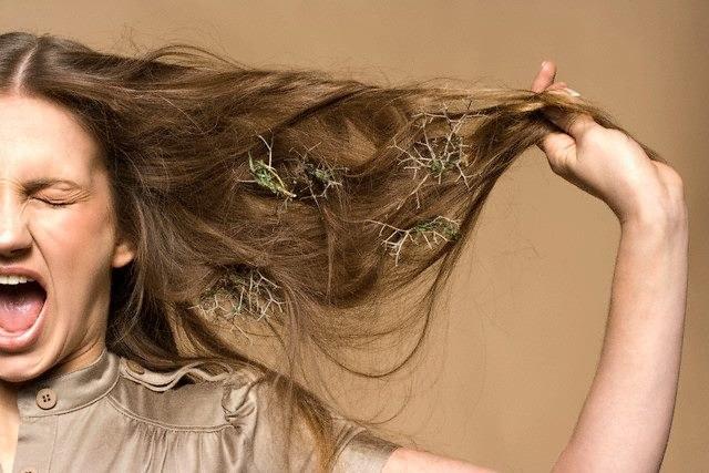 Почему после мытья головы выпадает много волос
