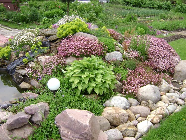 альпийские горки на садовом участке фото