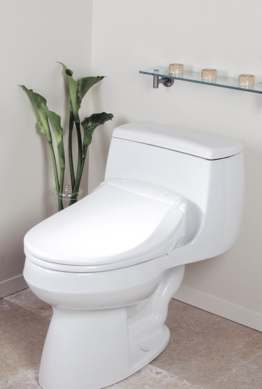 how to remove plaque on the toilet how to clean a water stone in the toilet plumbing. Black Bedroom Furniture Sets. Home Design Ideas