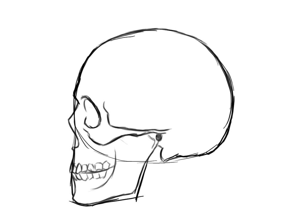 Картинки череп как нарисовать
