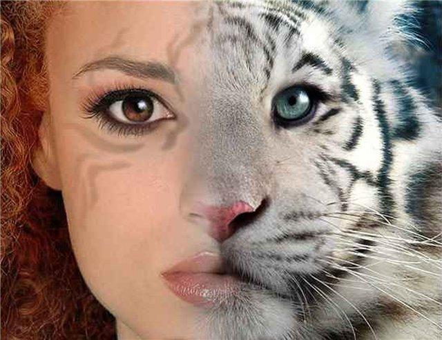 Как сделать из двух фоток одну :: как с двух фотографий ...: http://www.kakprosto.ru/kak-15846-kak-sdelat-iz-dvuh-fotok-odnu