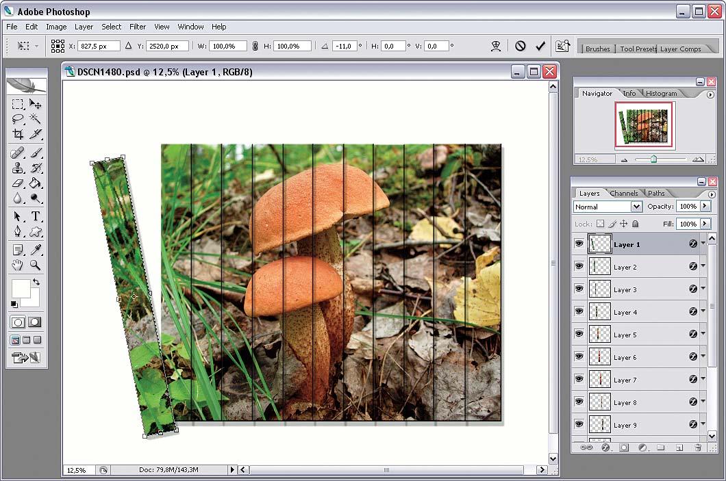 Как порезать картинку на равные части в фотошопе, юбилеем лет