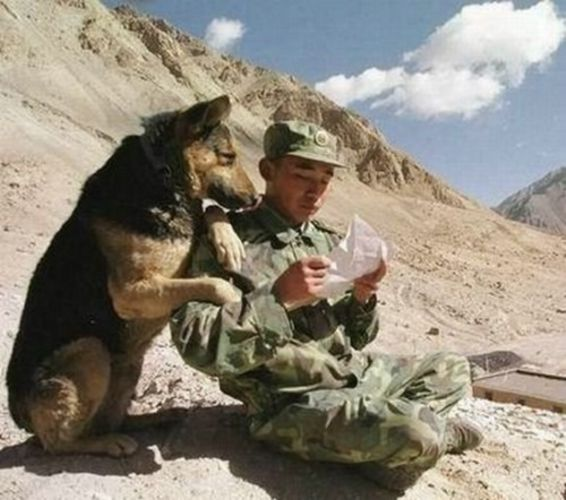 Как найти человека в армии