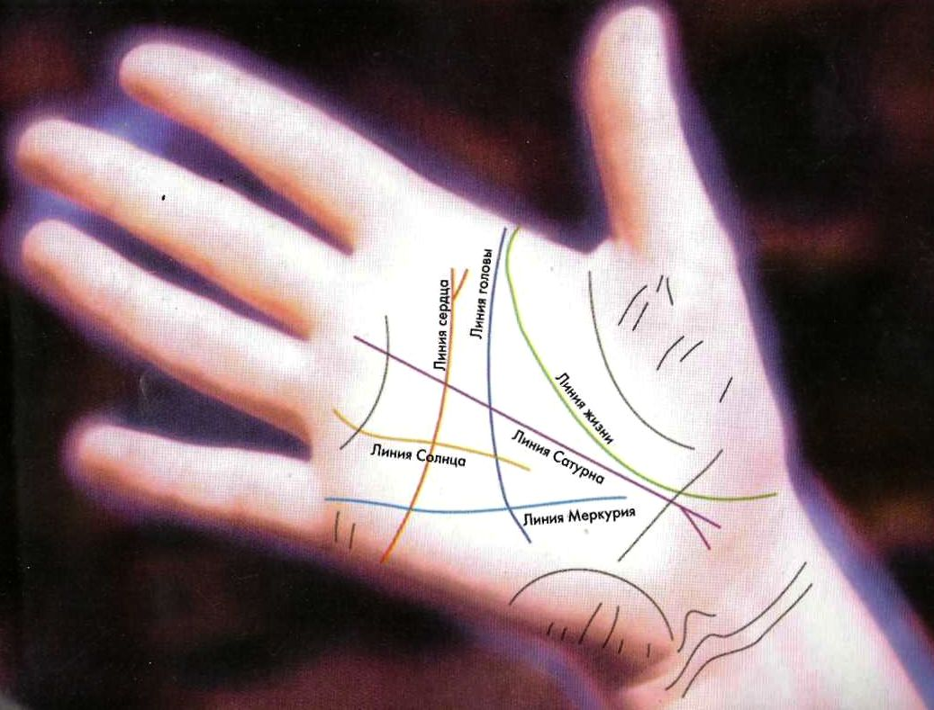 Линия аристократов на руке рисунок фото