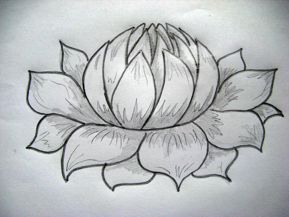 вместо рисунок цветки на бумаге простым карандашом заказать установкой, ороговато