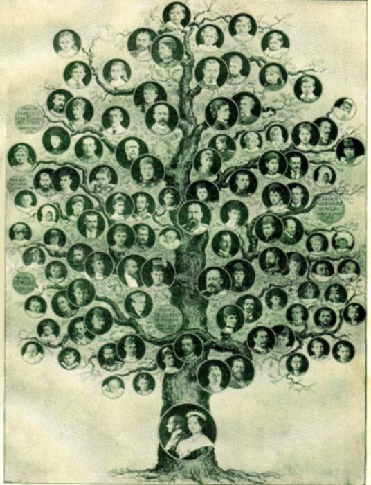 Как составить родословное древо схема