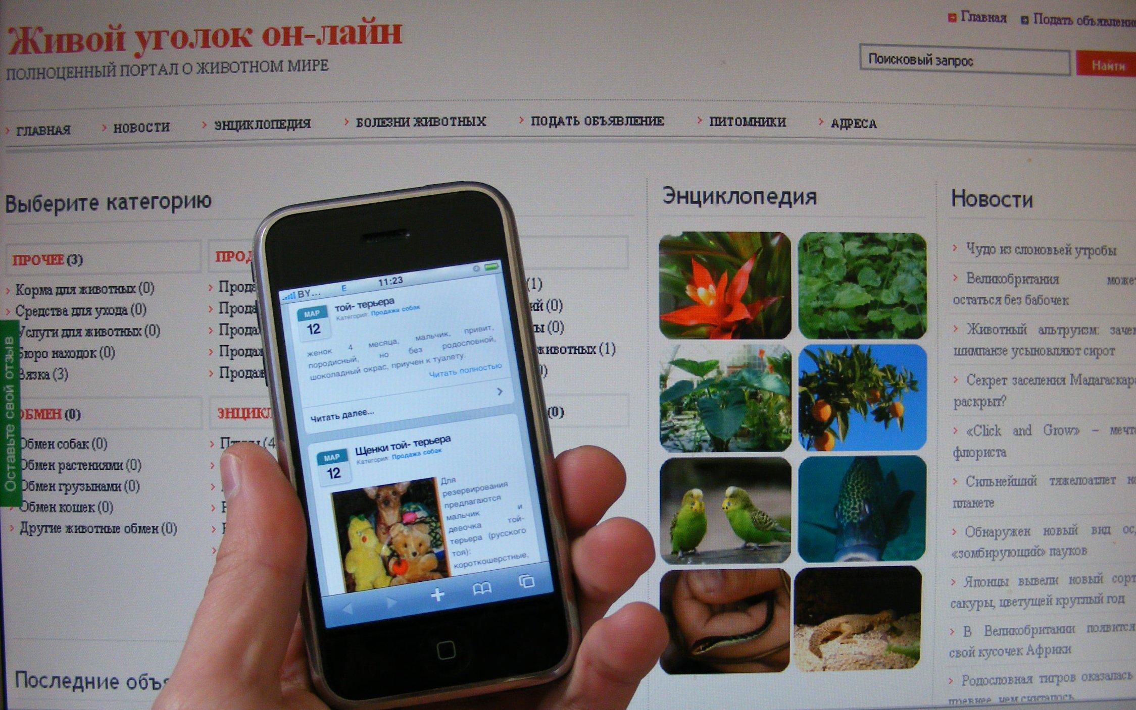 Как сделать сайт для мобильных устройств
