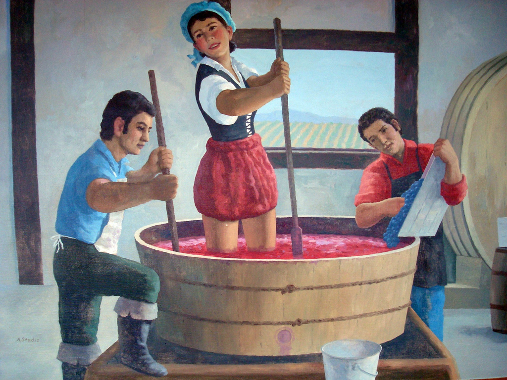 Как сделать домашнее сухое вино в домашних условиях