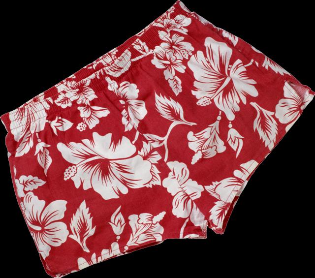 Как сшить женские шорты-трусы фото 231