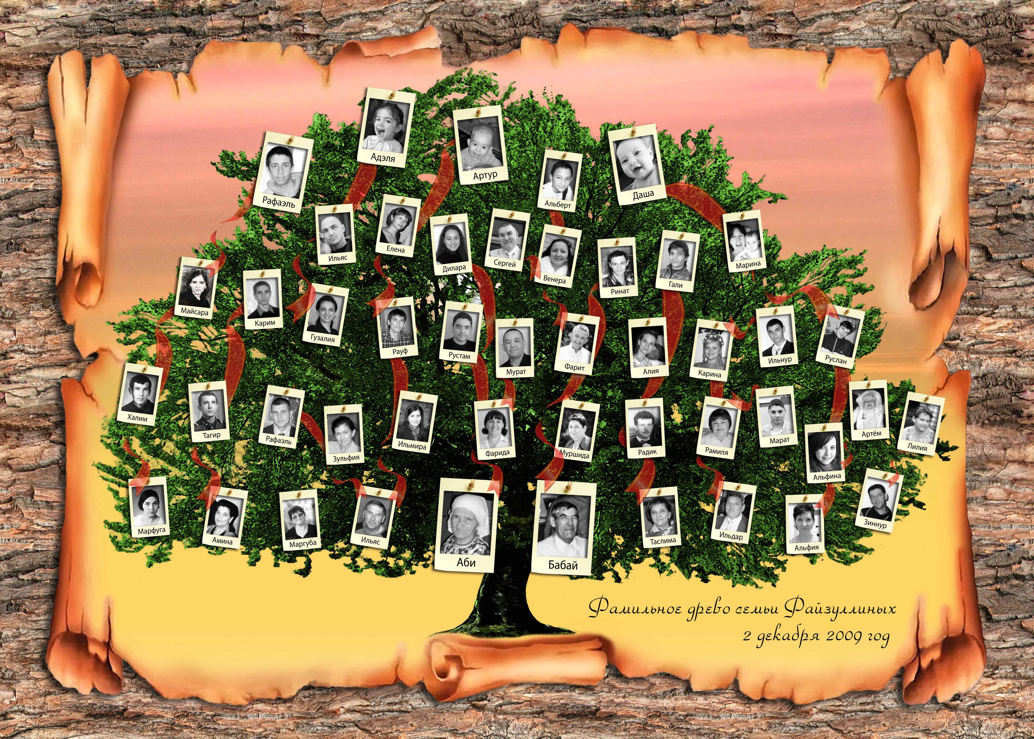 где найти корни фамилий: