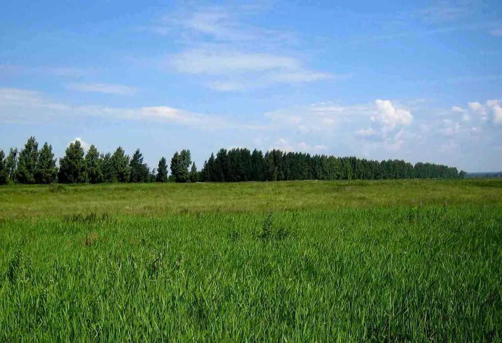 Как сделать границы земельного участка 189