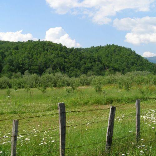 Вид разрешенного использования земельного участка и целевое назначение