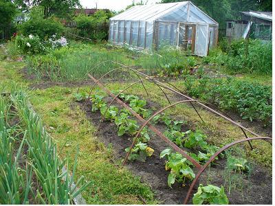 Как обустроить сад своими руками