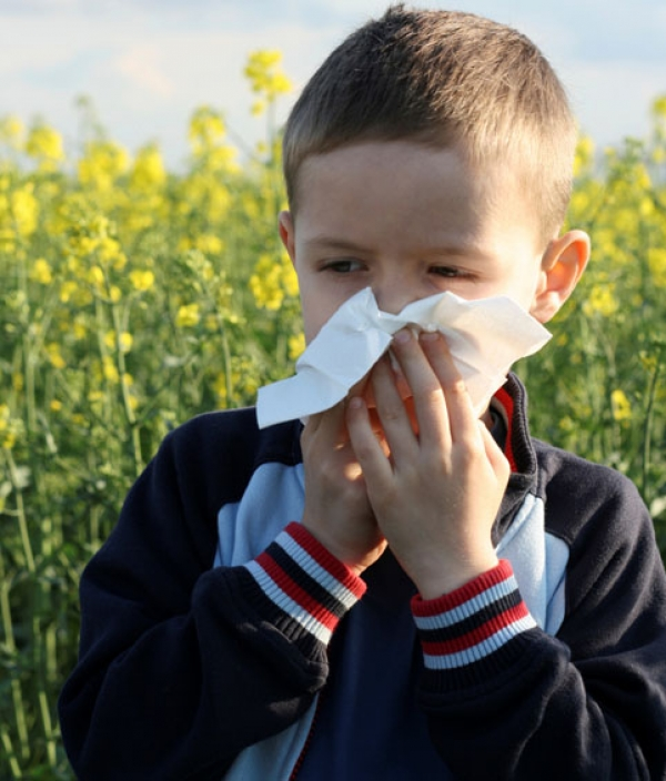аллергия сопли чихание