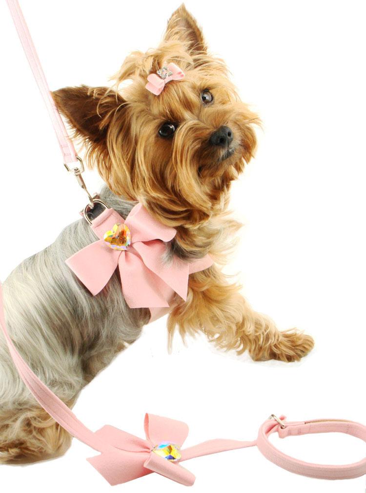 Картинки собака с бантом