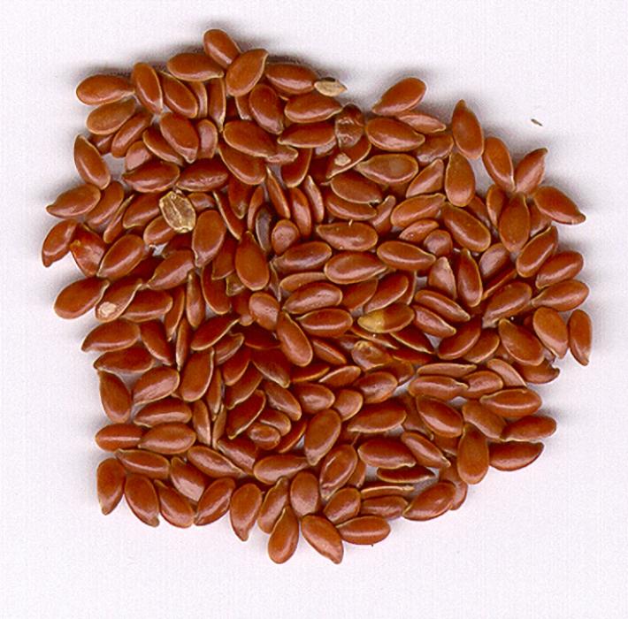 семя льна лечение паразитов