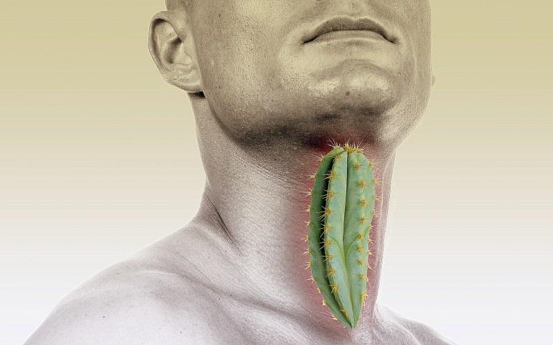 Антитела описторхисов лечение