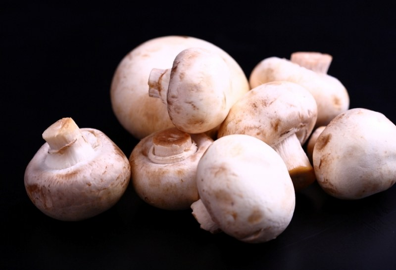 жульен с курицей и грибами в форме рецепт с фото