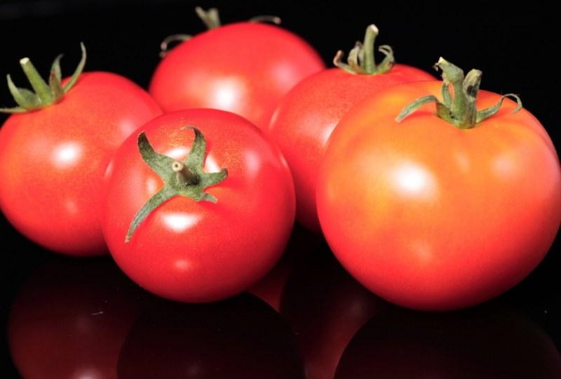 Инжир: выращивание в домашних условиях, как ухаживать, как посадить