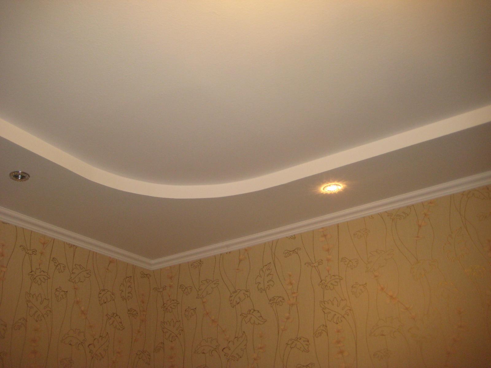 Навесные потолки фото для зала своими руками