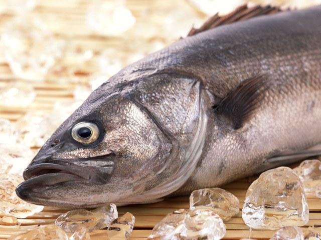 Фарш красной рыбы рецепты 94
