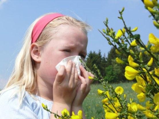 средство от аллергии не вызывающие сонливость
