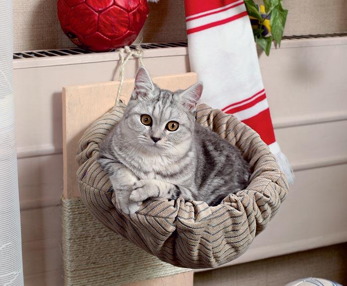 Своими руками переноску для котенка сделать