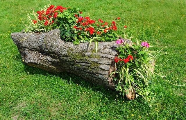 Садовый дизайн клумбы своими руками