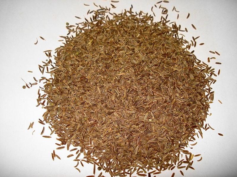 укропное семя от паразитов