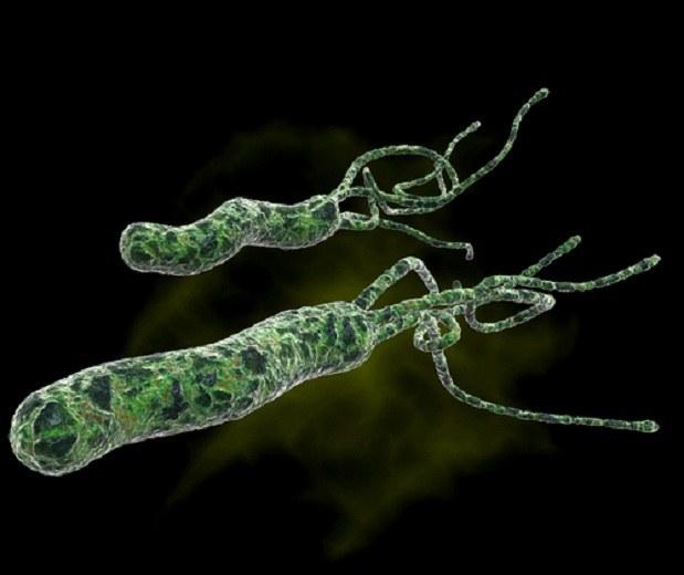 избавиться кишечных паразитов человека