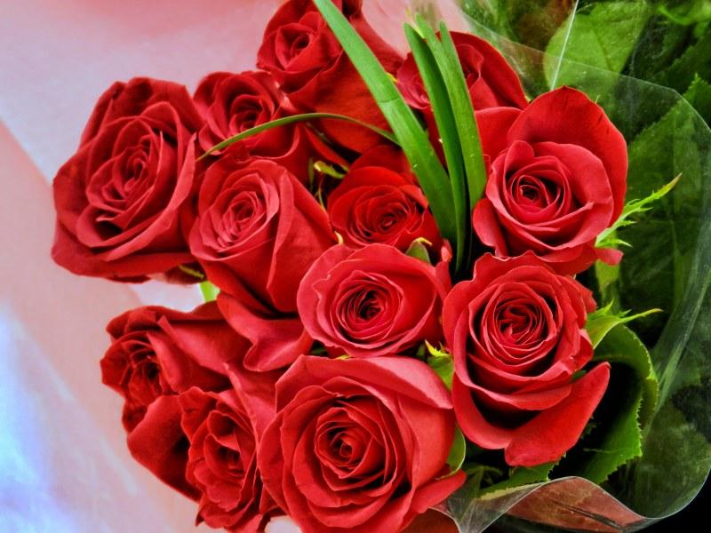 Картинки букеты роз для любимой, день осени