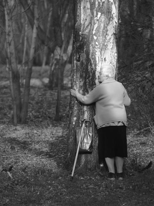 При болезни можно подзарядиться энергией от дерева, встав к нему лицом