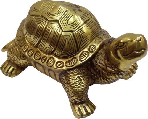 Черепаха по фен-шуй должна находится в зоне карьеры