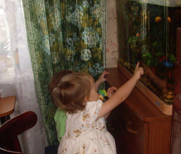 Как выбрать аквариум для детской комнаты