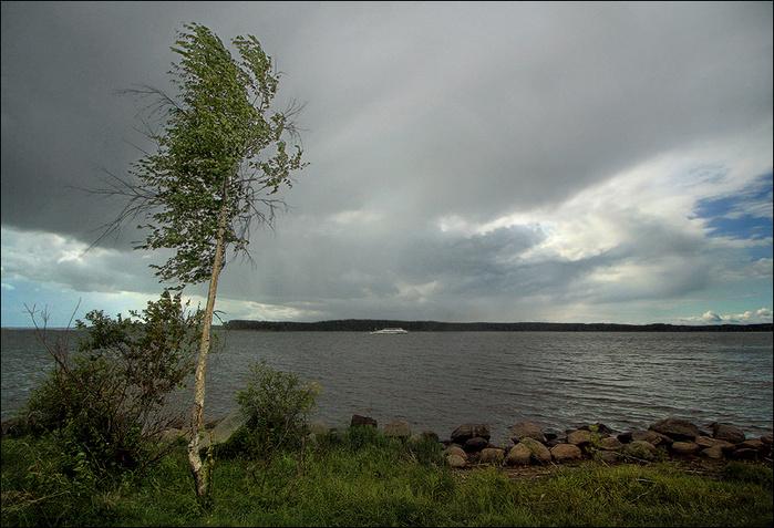 Бийск погода на июнь 2016