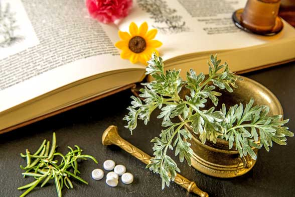 phytotherapy photo