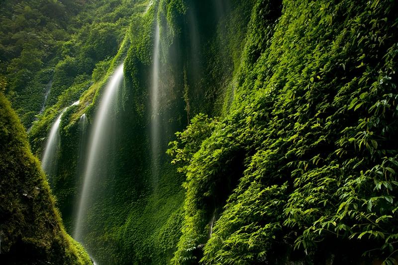 Madacarypura waterfall