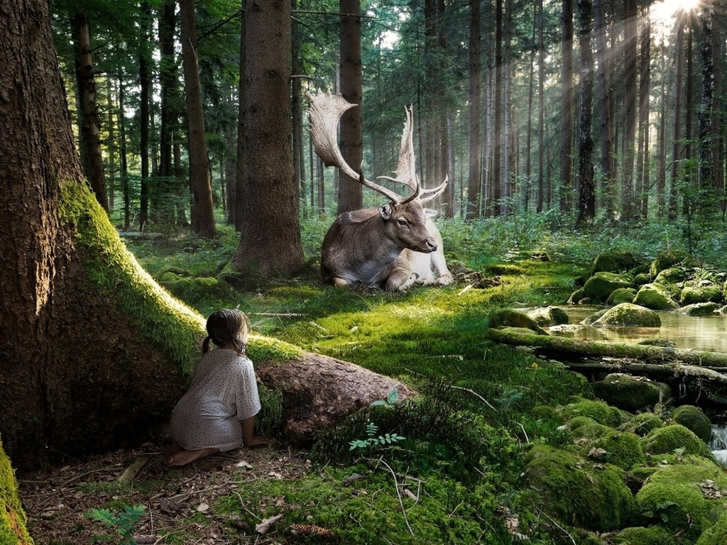 Лес - уникальное природное богатство, лес ценится