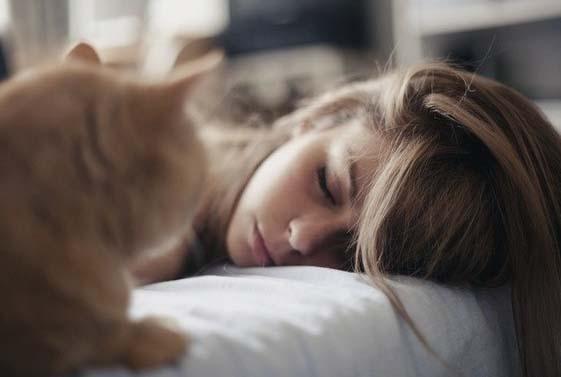Коты будят хозяев по утрам