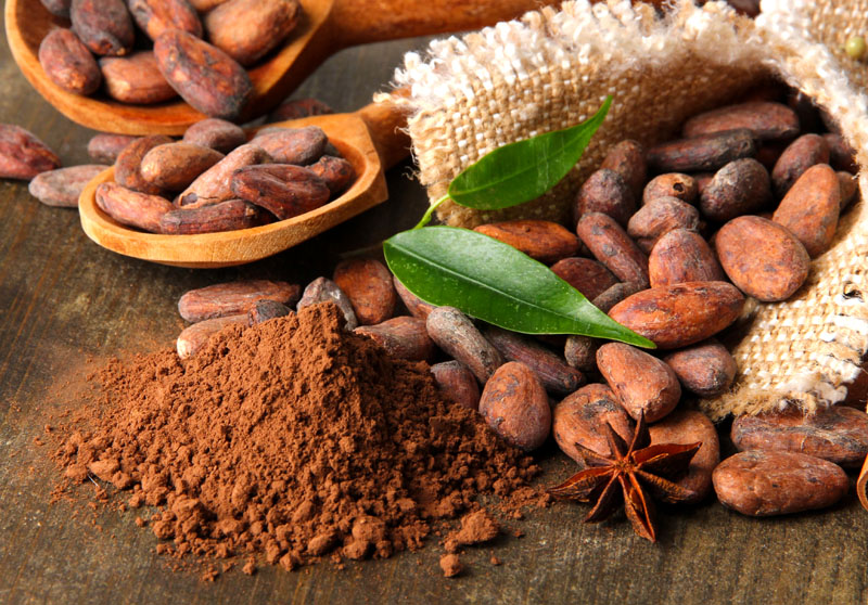 Пригодные свойства какао