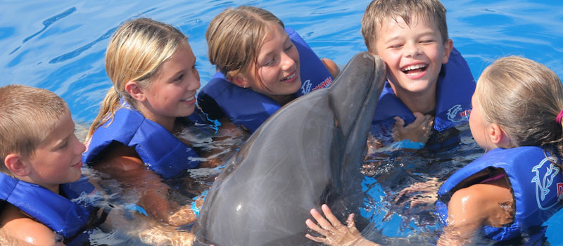 как дельфины лечат детей