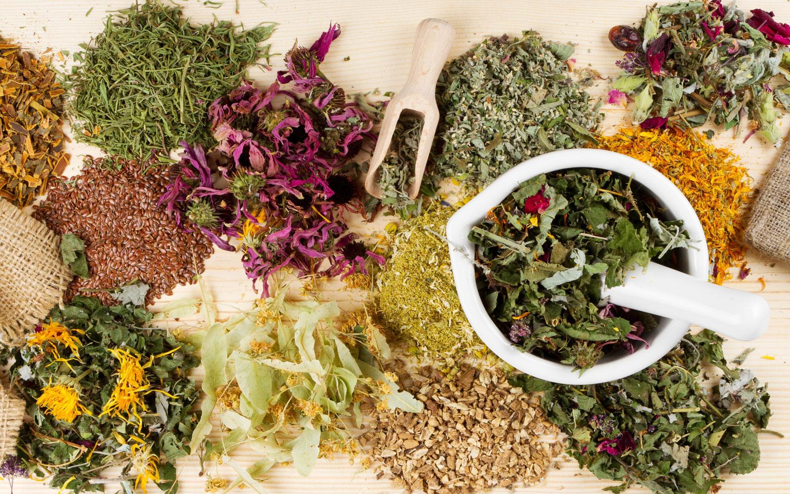 Какие пить травы при простатите